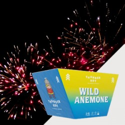Wild Anemone 48 βολές
